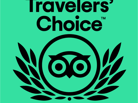 Podere Prasiano awarded with Travelers' Choice 2020 !