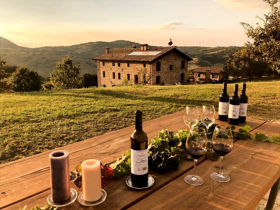 Agriturismo Podere Prasiano - Our Organic Wines