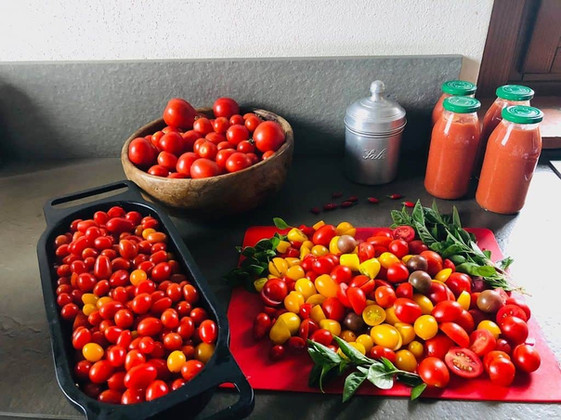 Red Taste of Italy