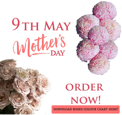 Mothers day web banner 2021