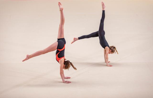Gymnastique_Artistique_Féminine.jpg