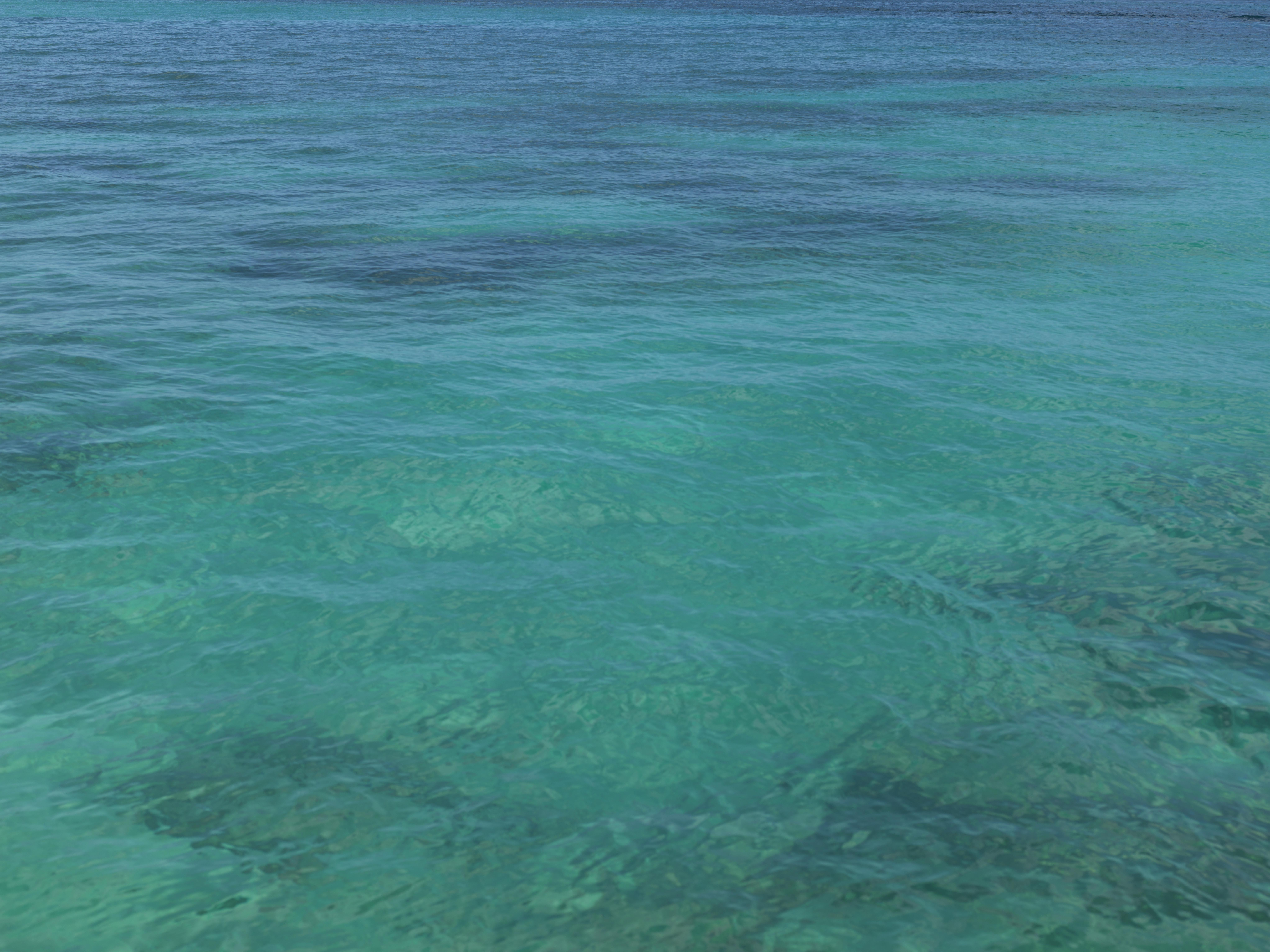 Caminos Sobre el Mar