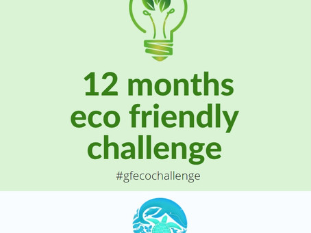 12 months Eco-friendly challenge