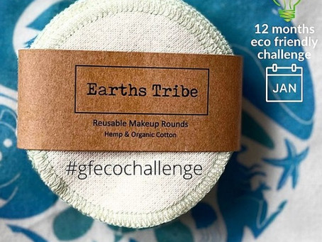 12 months eco-friendly challenge - January