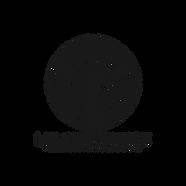Logo Luminescence.png