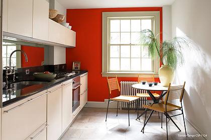 14b_kitchen_tomatotangoCSP1145_harborgra
