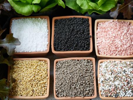 Indústria de fertilizantes espera atrair investimentos.