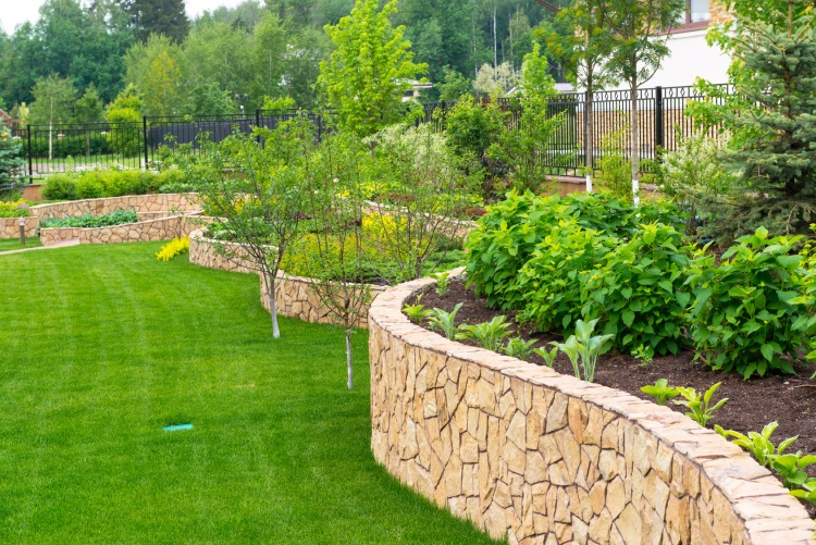 Landscaping Designs and Ideas