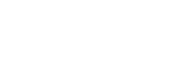 Advent Novi logo-02.png