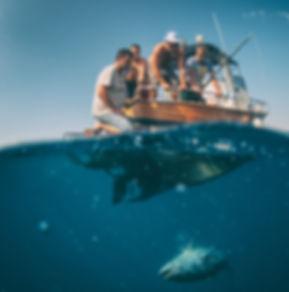 Photo-Igor-Popovic_Tim-Devetka-Offshore-