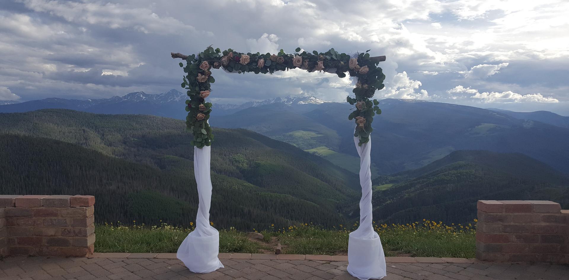 Fancy Pansy Wedding Arch