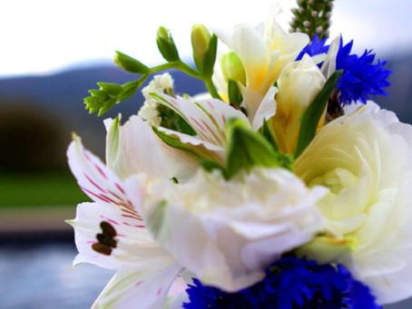 Tip for Fresh Cut Flowers