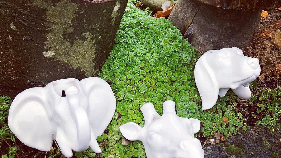 Animal wall planter