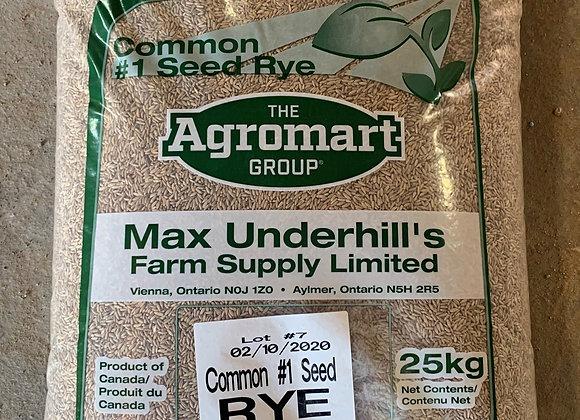Common Rye Seed(25 KG)