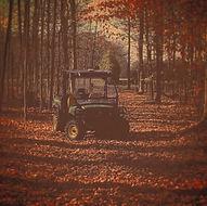 fall_edited.jpg