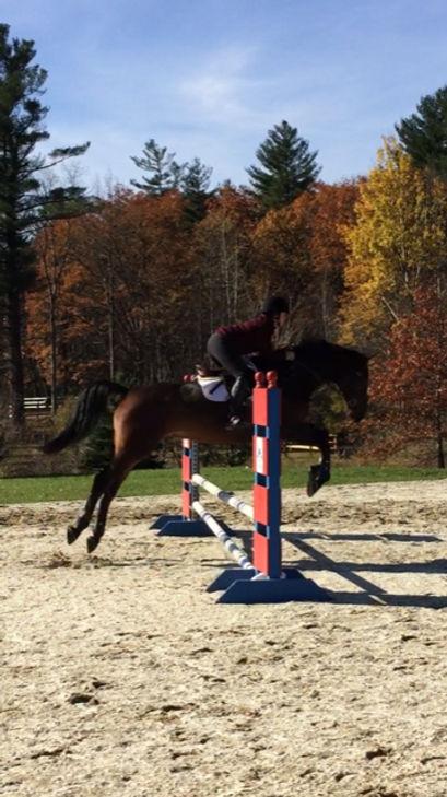 sheena-jumping.jpg