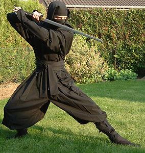 ninjitsu-ninjutsu-fighting-style.jpg