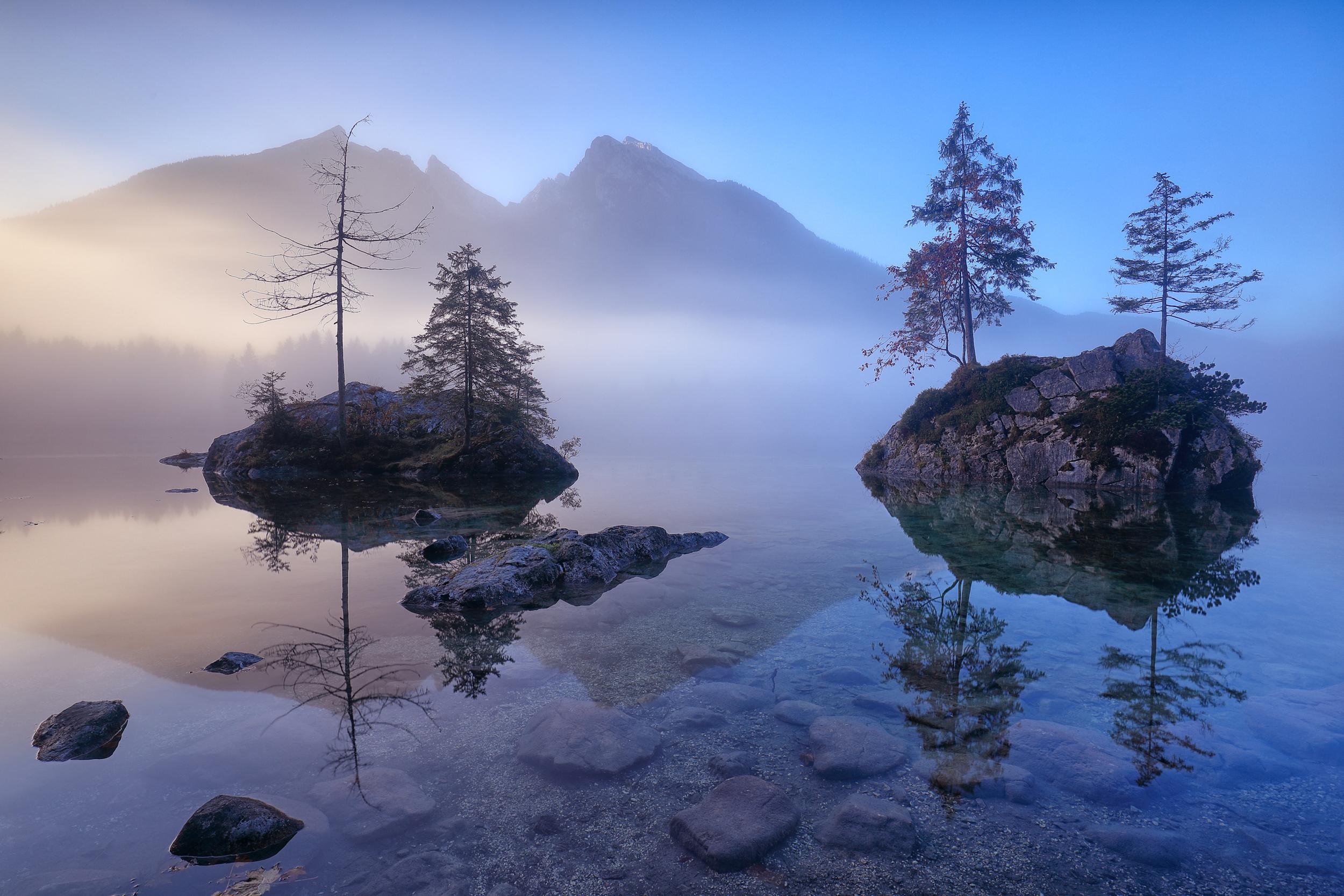 symphony of fog