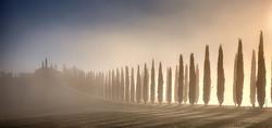glowing fog