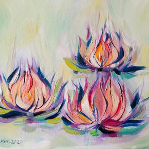 Lotus flammes
