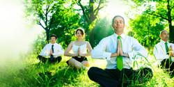 Wellness Benefits Administration