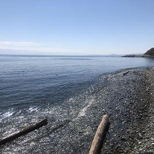 ocean picture.jpeg