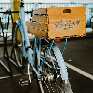 Burrard Bikes_Credit_Shayd Johnson.jpeg