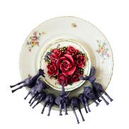rosae rosarum rosis