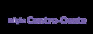 Logo Connecta Online Centro-Oeste p4.png