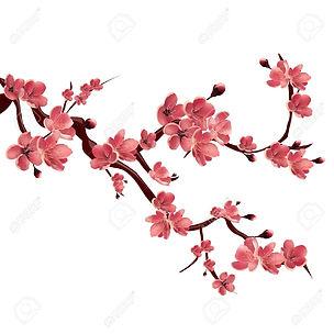 54341388-branche-de-rose-sakura-floraiso