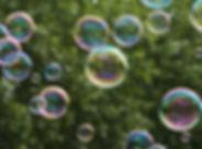 bulle-de-savon-nature-foret-arbre-2000x1