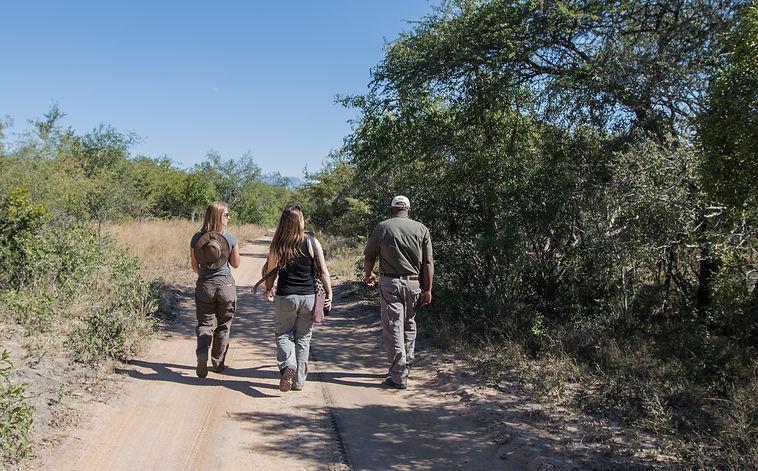 Guests on bush walk at The River Lodge at Thornybush