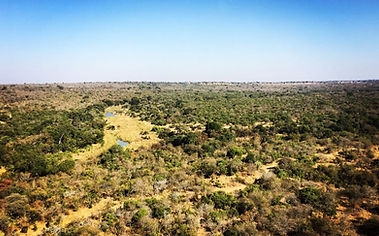 Aerial view of Thornybush