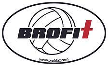 brofit sticker volleyball.jpg