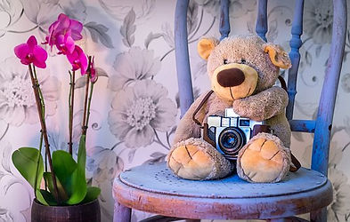 teddy-bear-1710641__340.jpg