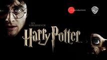 Les coulisses de Harry Potter  |  2022