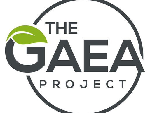 Small Steps, BIG IMPACT Challenge         presented by The GAEA Project