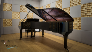 Completed:  Steinway Suite 1