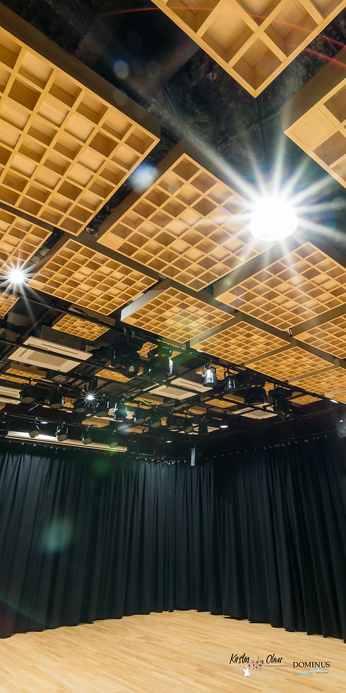 Recital Studio Ceiling image