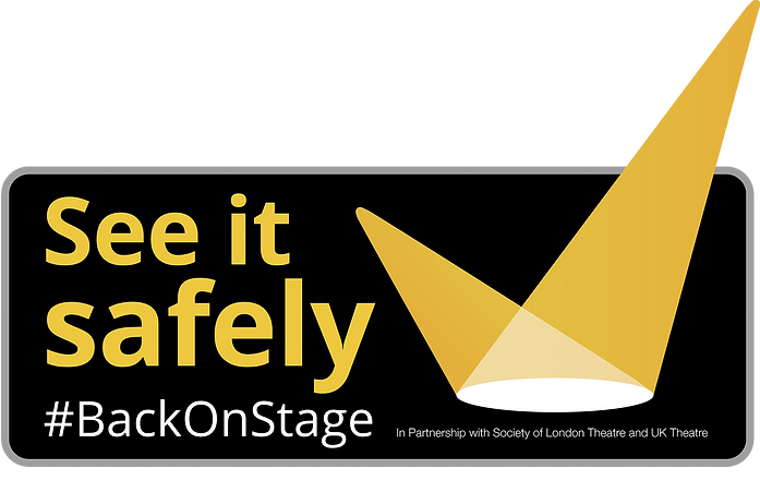 See it safely logo updated (H).png