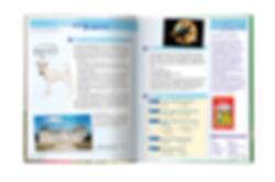 MB-spread-d.jpg