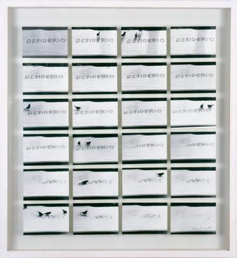 Desiderio, 1994 Serie von 24 sw Fotografien