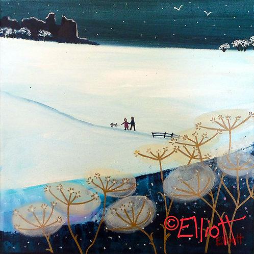Gaeaf Dinefwr Winter