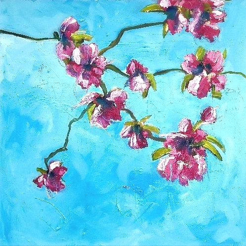 Bigger Blossom