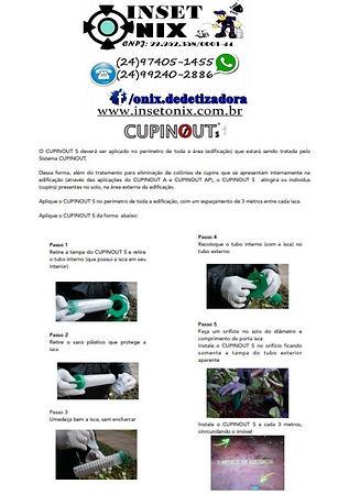 CUPINOUT2.jpg