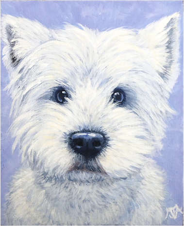 West Highland Terrier, Pet portrait, Pet portraits by Derbyshire artist Art by Mandy-Jayne Ahlfors ©, www.artbymandy.com