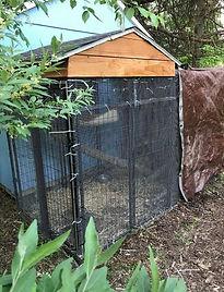 Ellymayfly's Opossum Enclosure
