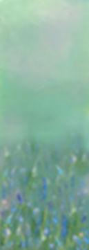meadowforscreen 2.jpg