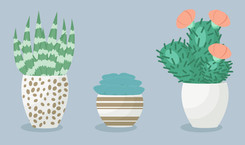 Positively Succulent