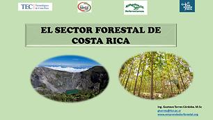 El Sector Forestal de Costa Rica .png